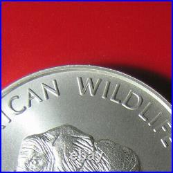 2000 ZAMBIA 5000 KWACHA 1oz SILVER MATTE ELEPHANT AFRICAN WILDLIFE RARE COIN