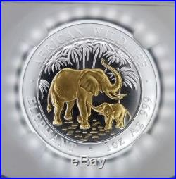 2007 Gilt Somalia Silver 100 Shillings African Wildlife Elephant Ngc Ms 69
