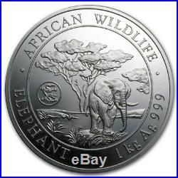 2012 Somalia 1 kilo Silver African Elephant (Dragon Privy) SKU #75689