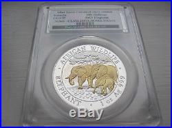 2013 1oz Silver 100 Shilling Somalia Elephant Coin CGS97 With Gold highlighting