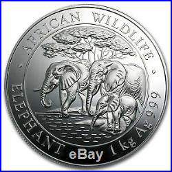 2013 Somalia 1 kilo Silver African Elephant SKU #75690