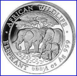 2013 Somalia Elephant 100 Shillings Solid Fine. 999 Silver 1oz Coin