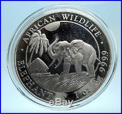2017 SOMALI REPUBLIC SOMALIA Elephant African Wildlife Silver 100Shl Coin i77543