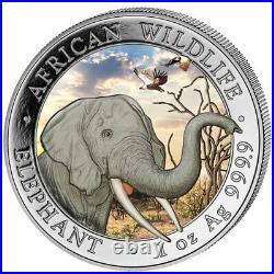 2018 Somalia Elephant African Wildlife 1 Oz. 999 Colorised Silver Coin