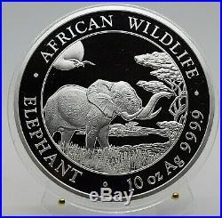 2019 Somalia Elephant 10 Oz Silver coin