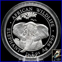 2021 Somalia 200 Shillings Somali Republic Elephant 2 oz. 9999 Silver BU