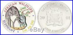 Afrika, Sambia, 5000 Kwacha 1oz, African Wildlife Elephant in Farbe/Silber st