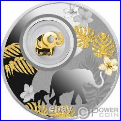 ELEPHANT Lucky Silver Coin 500 Francs Cameroon 2020
