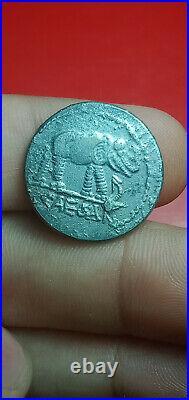 EXTREMELY RARE ANCIENT ROMAN AR SILVER DENARIUS COIN Julius Caesar / Elephant