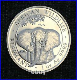 Four silvercoins 1 oz year 2021 African Wildlife Elephant. 99,99% silver purity