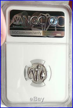 JULIUS CAESAR 49BC Elephant Serpent Authentic Ancient SILVER Roman Coin NGC XF
