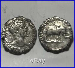 Rare original ancient Roman silver coin Septimius Severus denarius Elephant
