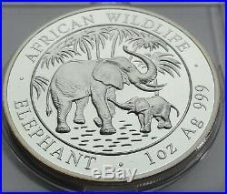 SOMALIA 2007 100 SHILLINGS ELEPHANT 1 Oz 999 SILBER SILVER PROOF RARE