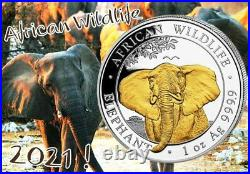 Silver Coin African Wildlife, Somalia Elephant 2021 Gold Plated Gildet