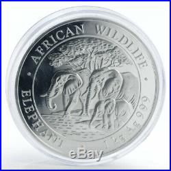 Somalia 2000 shillings African Wildlife Elephant silver coin 1 kilo 2013