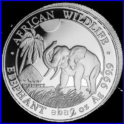 Somalia Elefant 2017 2 OZ Unzen Silber Silver Argent African Wildlife Elephant