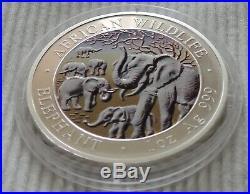 Somalia Elephant 2008 1 oz Silver color coin African Wildlife colorized elefant