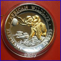 Somalia-Somali 100 Shillings 2016 African Wildlife Elefant #F3052 High Relief
